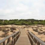 Los Enebrales de Punta Umbría